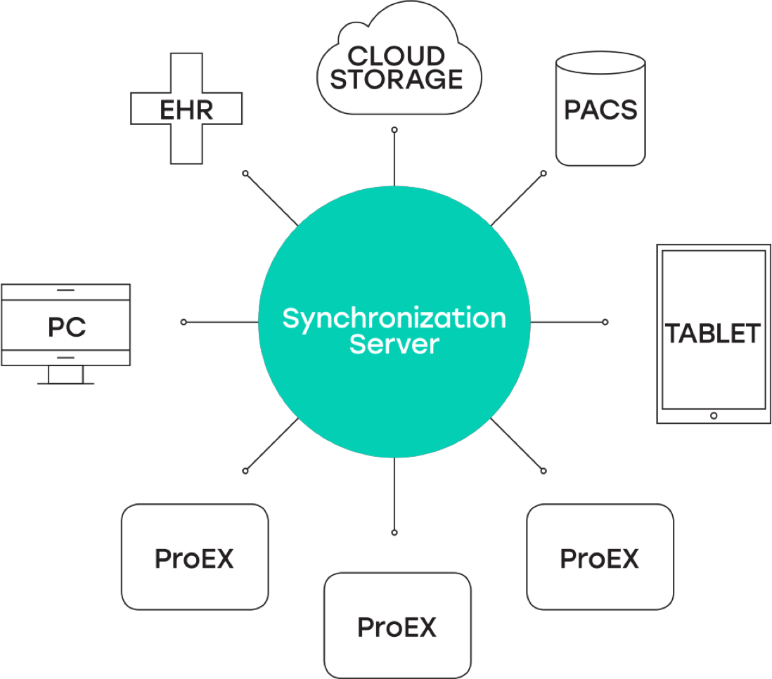 diagram of vf-sync electronic health record software